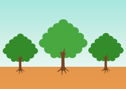 plant_tree01w.jpg